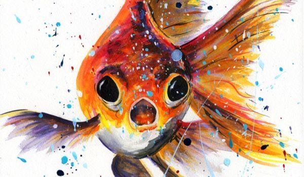 Tropical Fish Goldfish