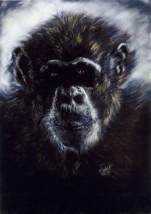 Soft Pastels Chimpanzee, Gorilla, Chimp, Monkey, Baboon