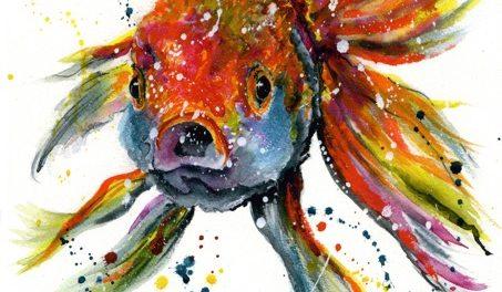 Goldfish Tropical Fish