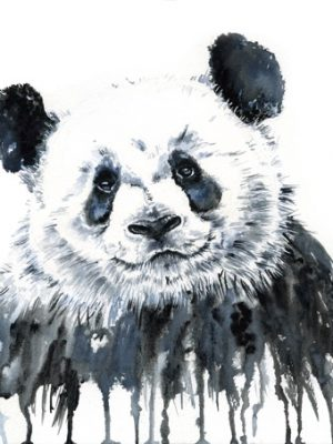 Panda Stole My Heart