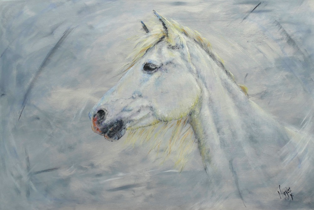 spirited grey
